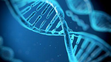 Photo of DNA പരിശോധന – എന്ത് ? എങ്ങനെ?