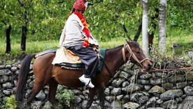 Photo of കല്യാണ പന്തലിലേക്ക് മുന് കാമുകിയുടെ മാസ്എന്ട്രി; ഇവള് റിവോള്വര് റാണി